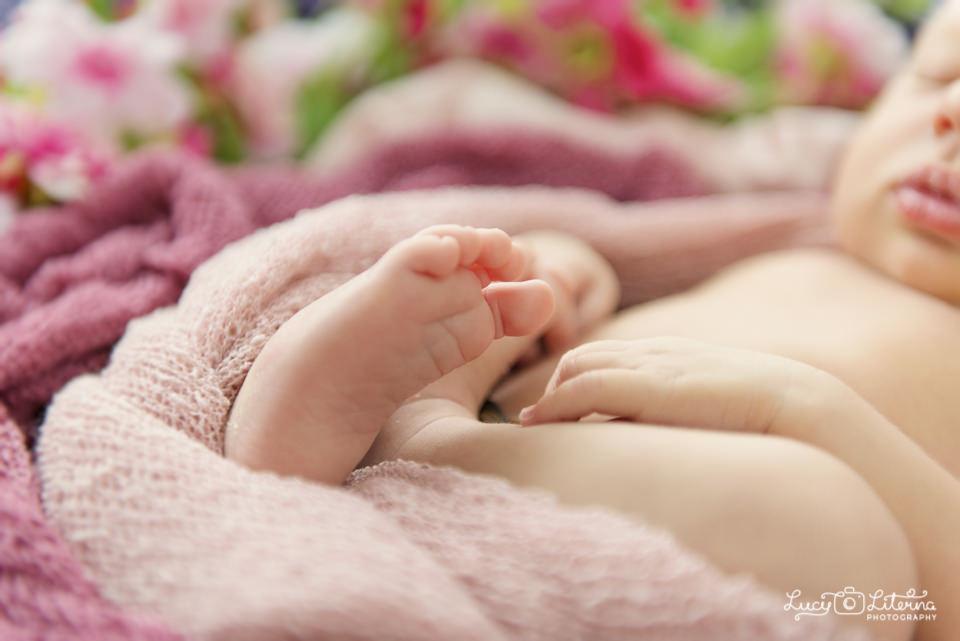 baby photo studio