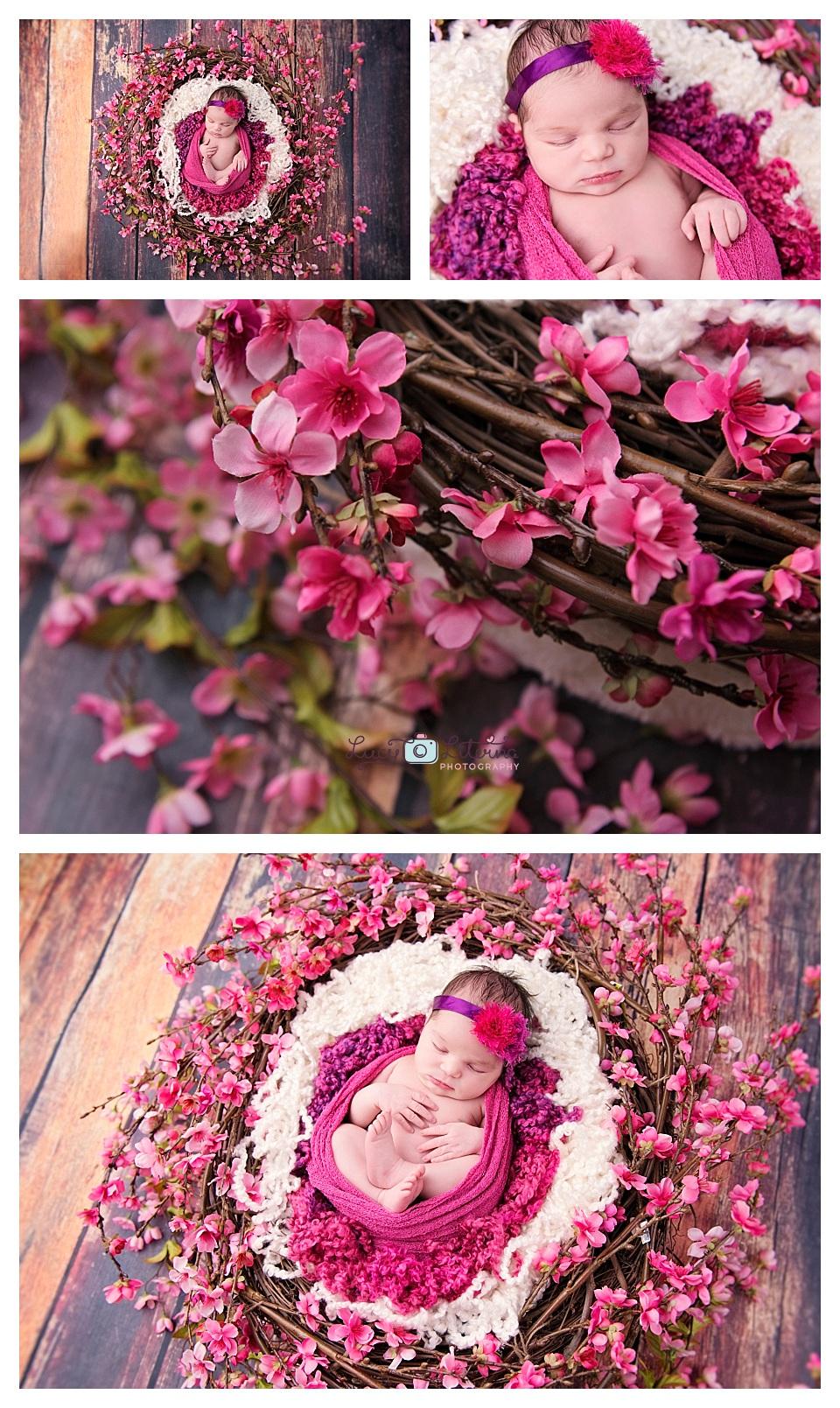 newborn photography baby girl flowers