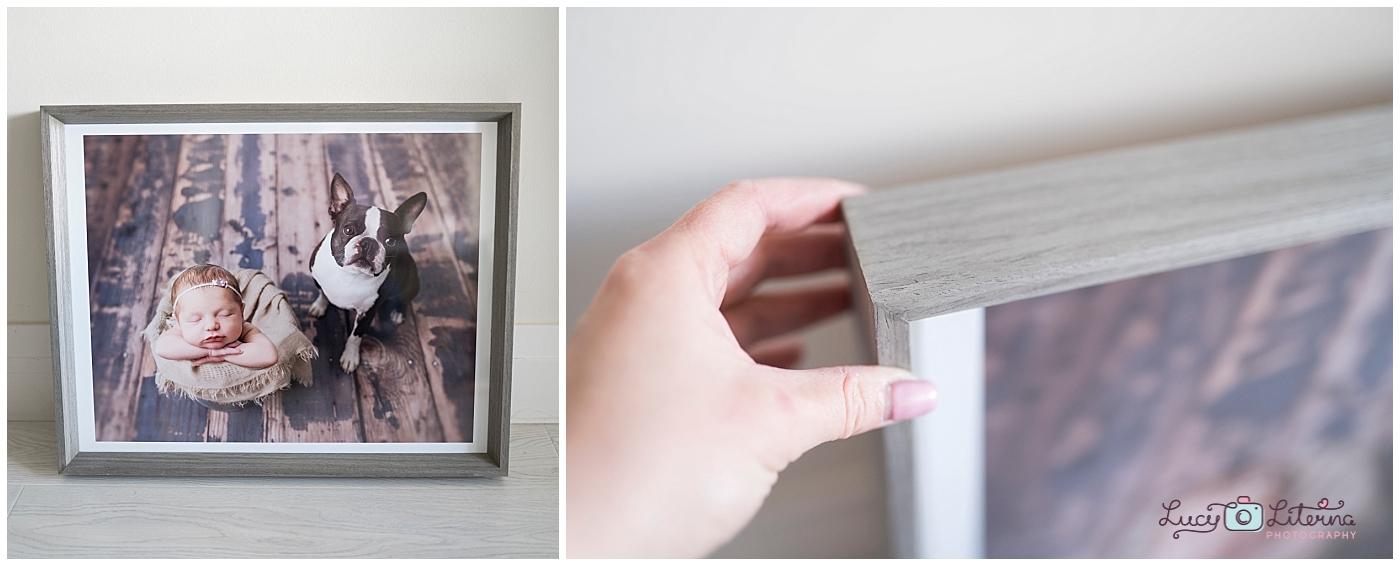 newborn photography frame